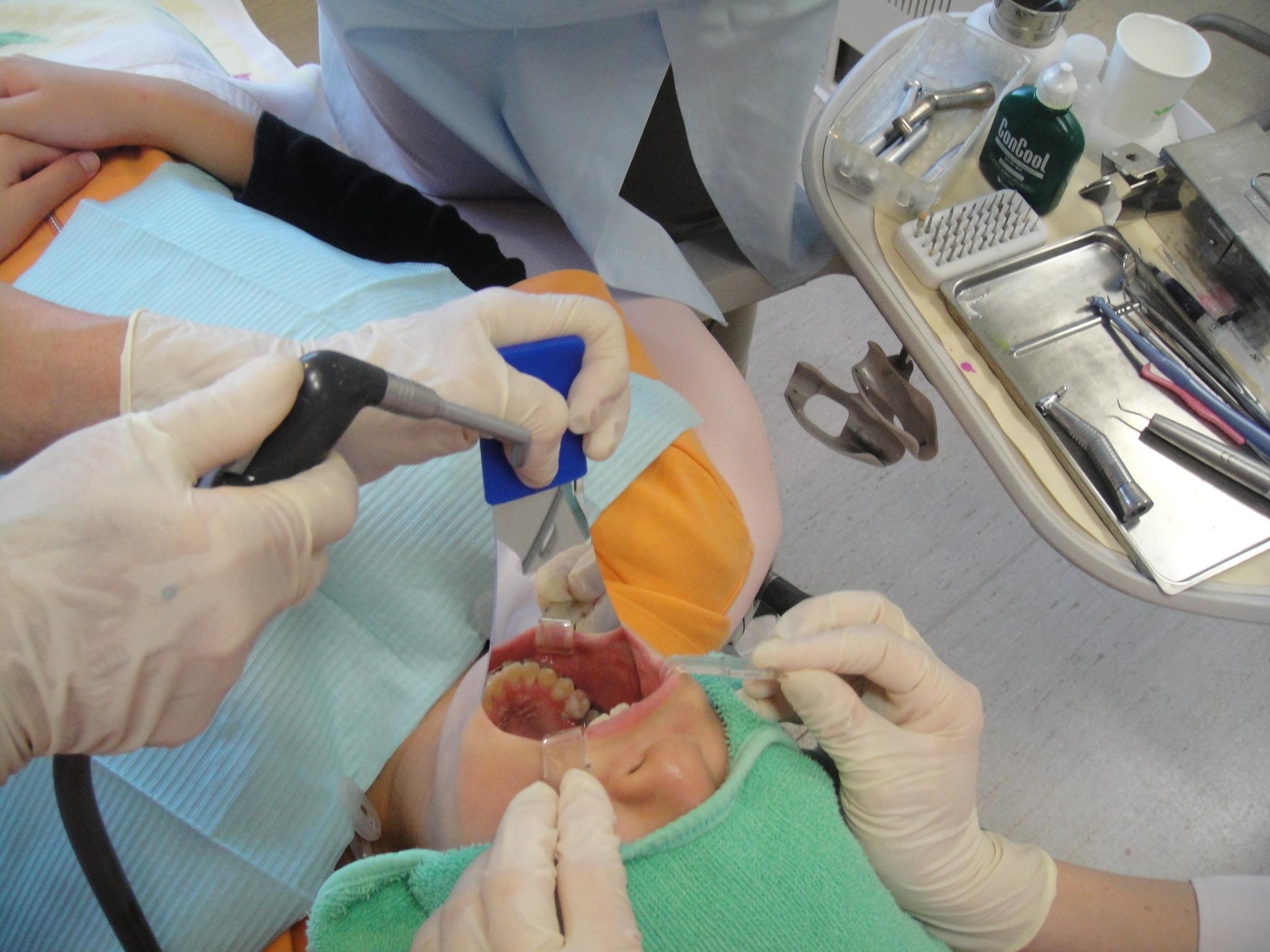 歯科衛生士現場復帰プログラム